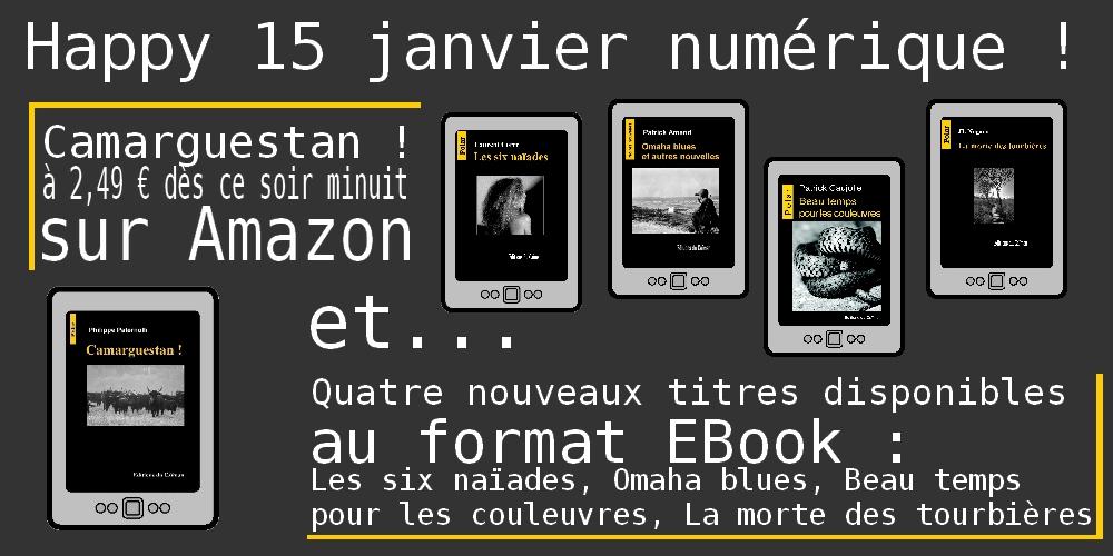 Annonce numerique janvier