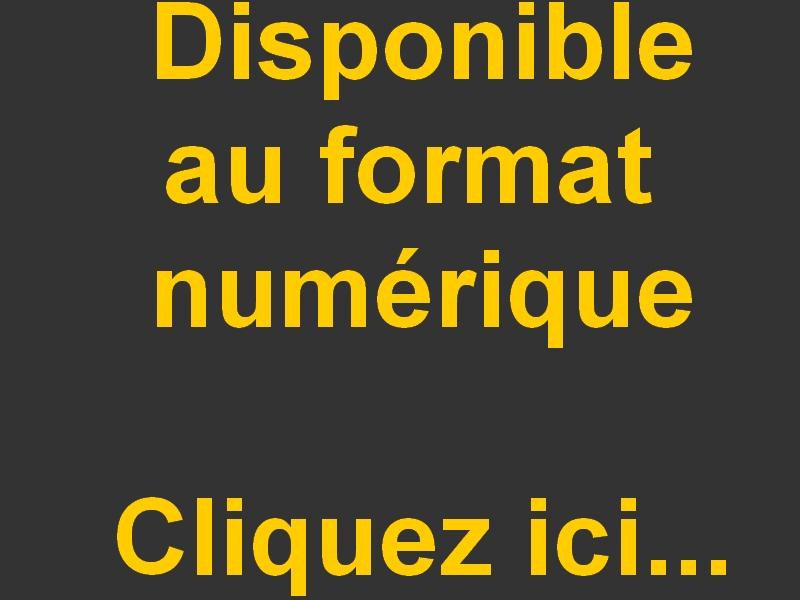 Logo numerique 1