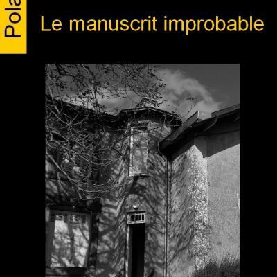 Le manuscrit improbable, Patrick Amand